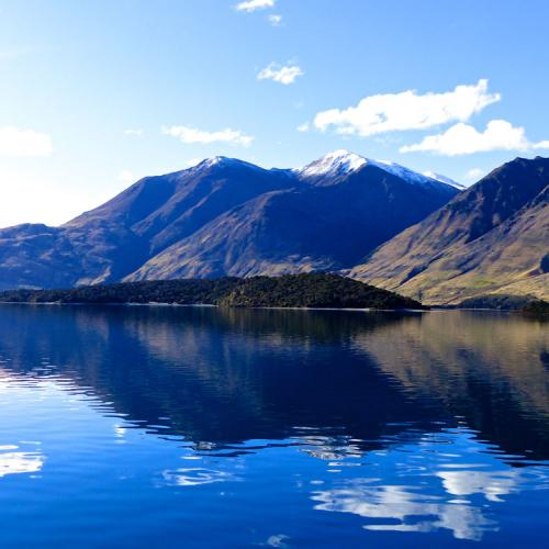 Monet would have loved Wanaka